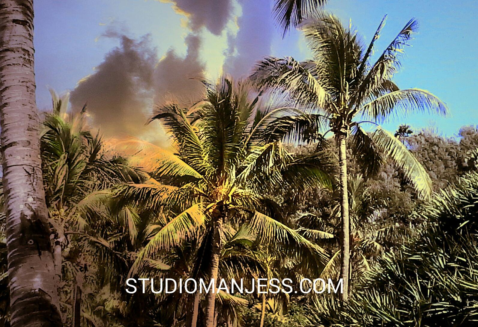 Studiomanjesss.com