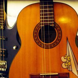 Basse et guitare de manjess